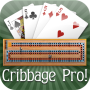 icon Cribbage Pro