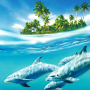 icon Dolphin Live Wallpaper